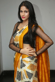 Lavanya Triapathi Vivacious Beauty Transparent Blouse Lovely Saree Spicy Pics at Ala Ela Audio Release