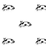 black white ladybug pattern