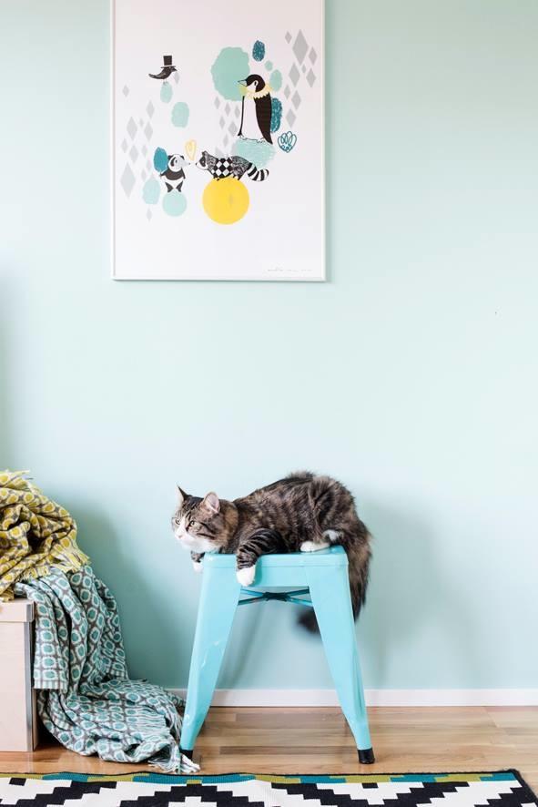 Pörröinen kissa