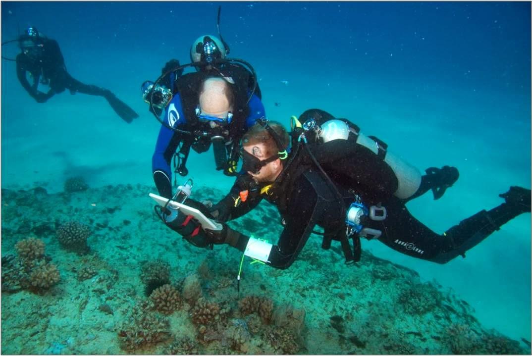 topside noaa staff provide training to university of hawaii divers