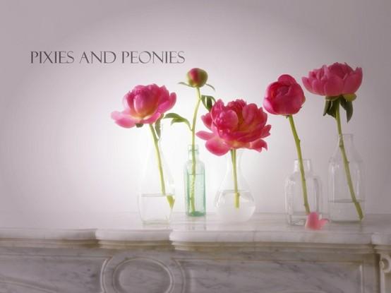 Pixies and Peonies