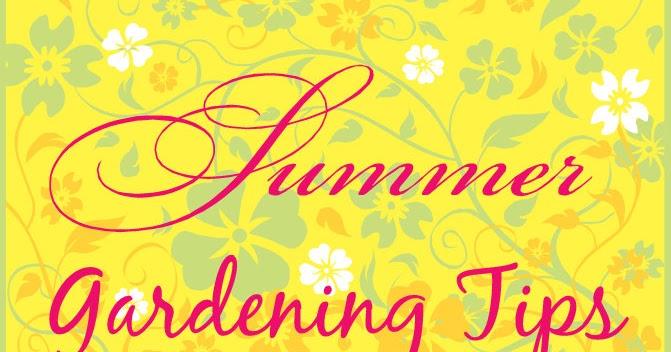 Gardening with red hill summer garden tips - Summer time gardening tips ...