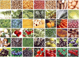 The Benefits of Raw Food Diet For Cancer Patients