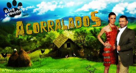 'ACORRALADOS', NUEVO REALITY EN TELECINCO