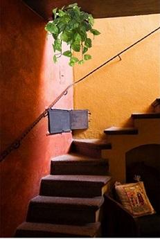 mismo tiempo el ch de esta sensible zona que conecta los diferentes niveles de su casa si hay poco espacio podemos utilizar tambin plantas colgantes