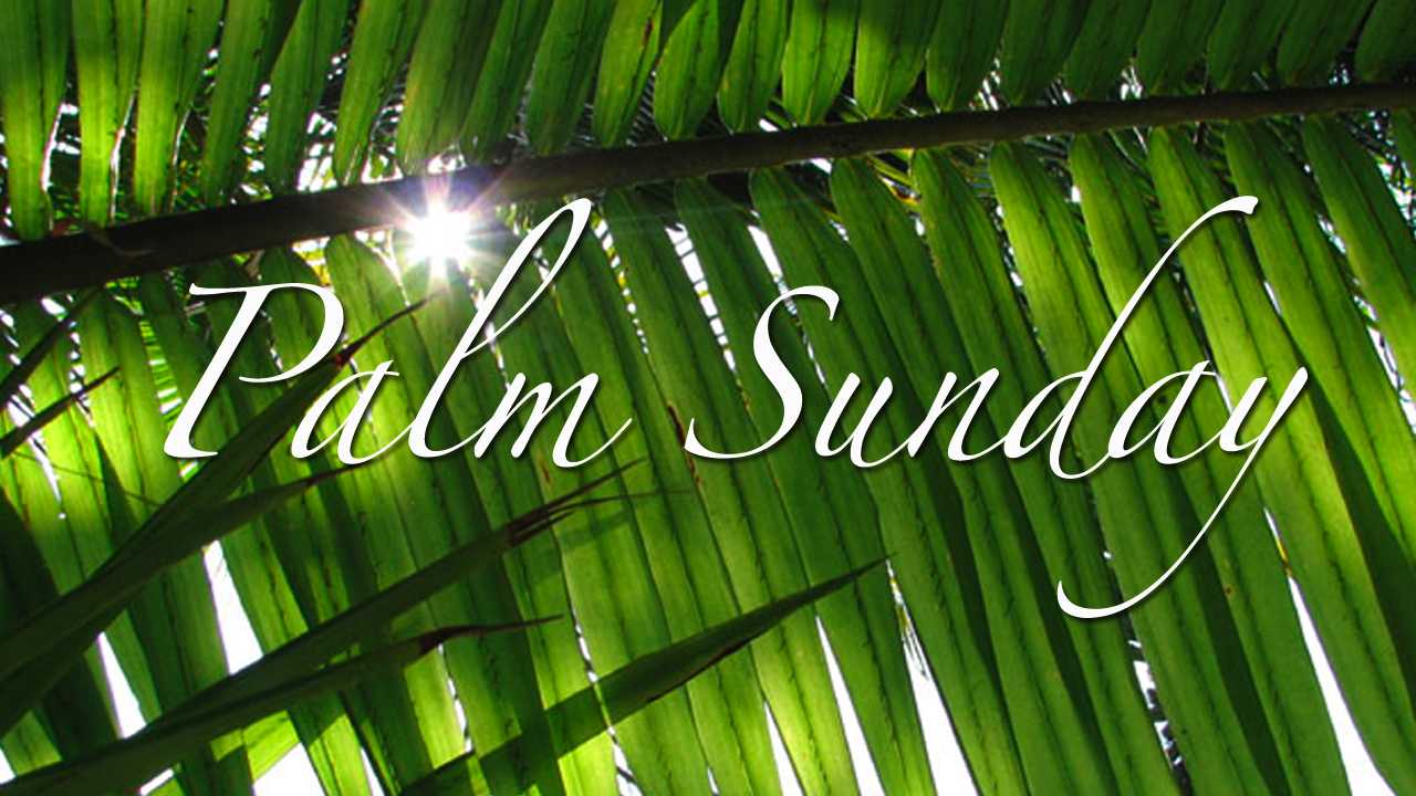 Catechism Catechesis Palm Sunday