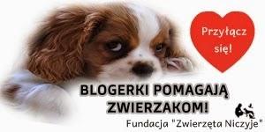 Pomagamy zwierzakom!