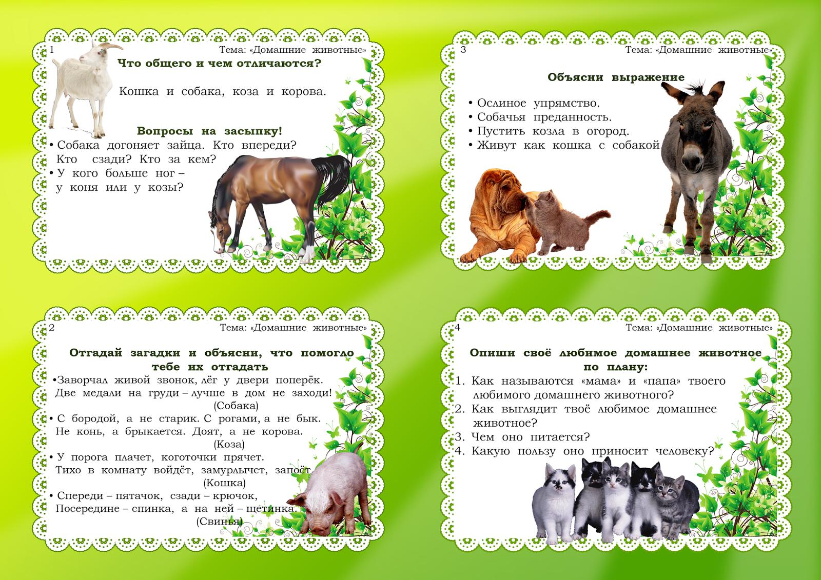 тема домашние животные с картинками