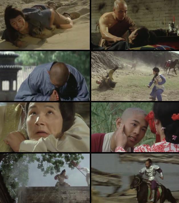 The Shaolin Temple 1982 Dual Audio Hindi 720p BluRay