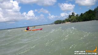 kayak, mangrove, guadeloupe kayak