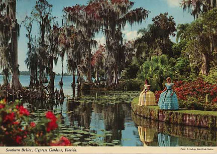 day in day out postcards cypress gardens. Black Bedroom Furniture Sets. Home Design Ideas