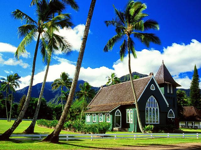 красивый дом под пальмами