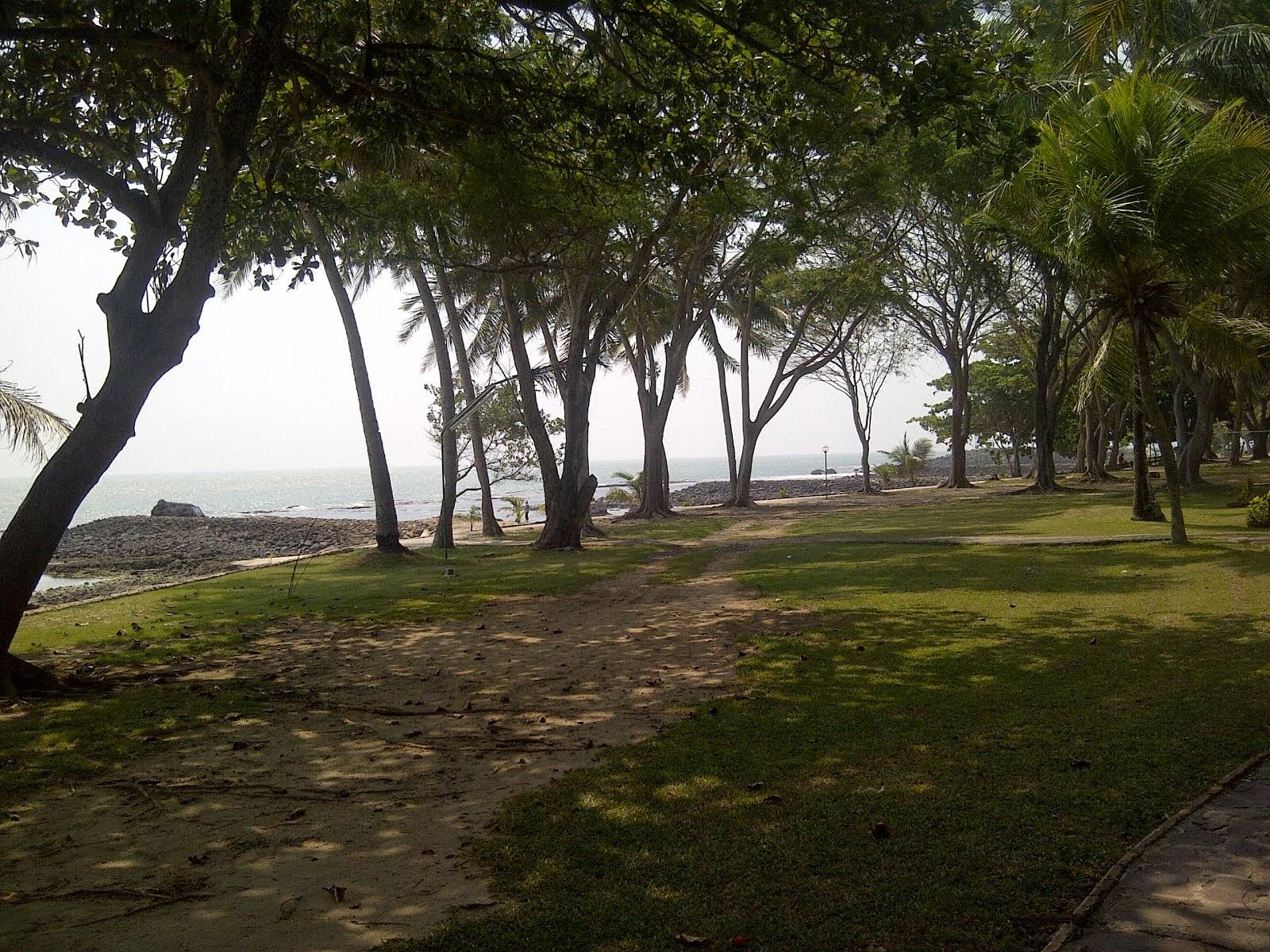 taman samping pantai