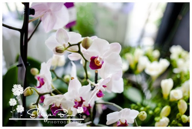 Weddings, Flowers & Brides: A Sisterhood Circle post.