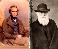 داروين أون لاين