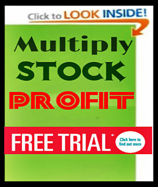 Multiply Stock Profits