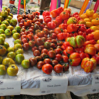 Red Fire Farm Tomato Festival New England Fall Events