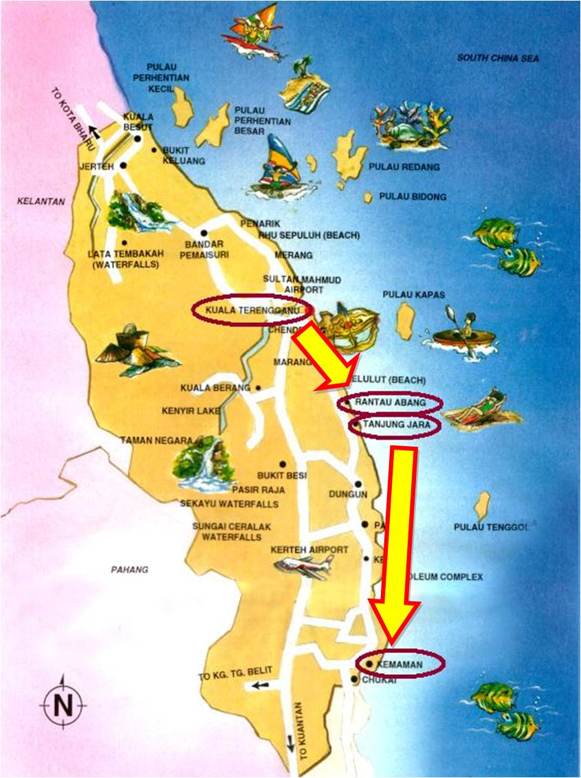 Story Of My Life Turtles And Fireflies Day In Terengganu - Fireflies map of us