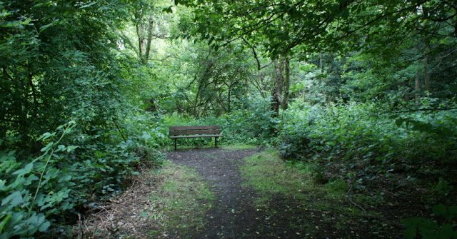 Lovely secluded spot, Hampstead Heath