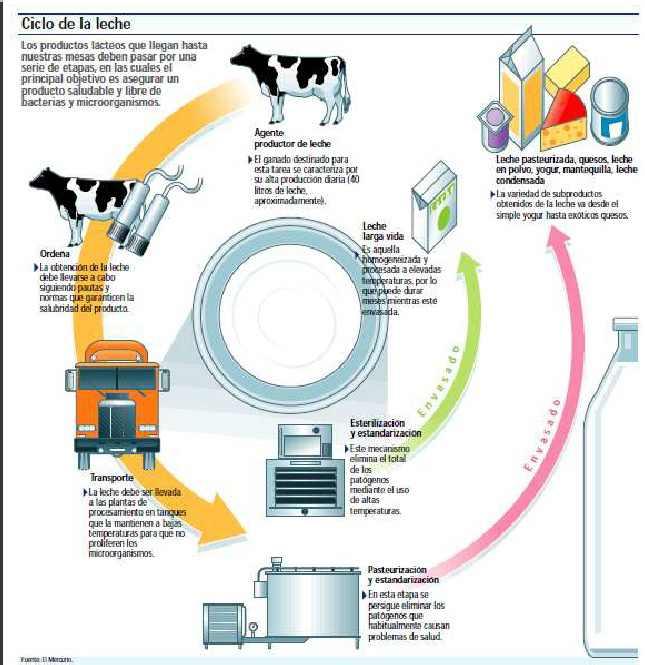 como es el proceso de la leche: