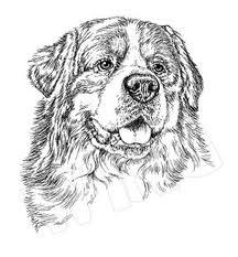 Immagini di cani da colorare for Cani e gatti da stampare e colorare