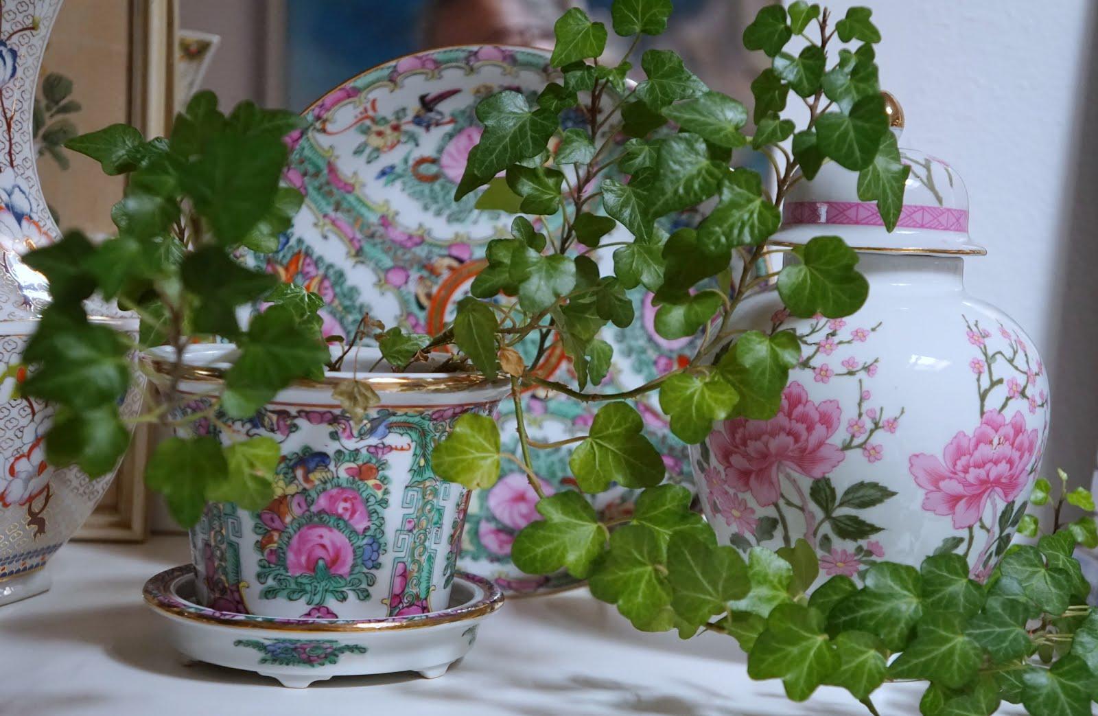 Efeupflanze und Flohmarktschätze