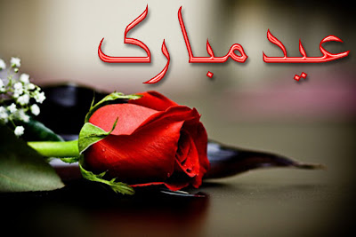 Eid Ul Adha Zuha Mubarak Rose Flowers Wallpapers Greeting Cards 2012 in Urdu 026