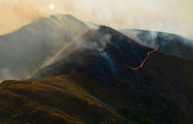 Incêndio teria destruído 30 mil hectares na região da Chapada, segundo governo. (Foto: Divulgação/ICMBio)