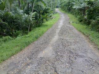 Jalan Curug Pitu