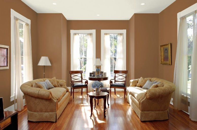 Brown living room paint home decor gallery Chocolate colour wall paint