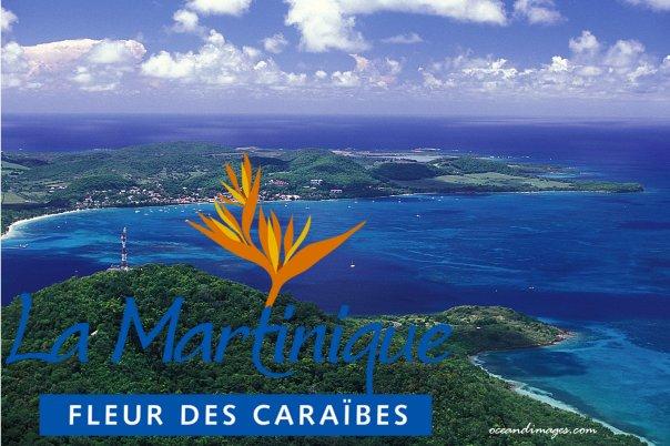 Martinique air show may 2012 - Office de tourisme martinique ...