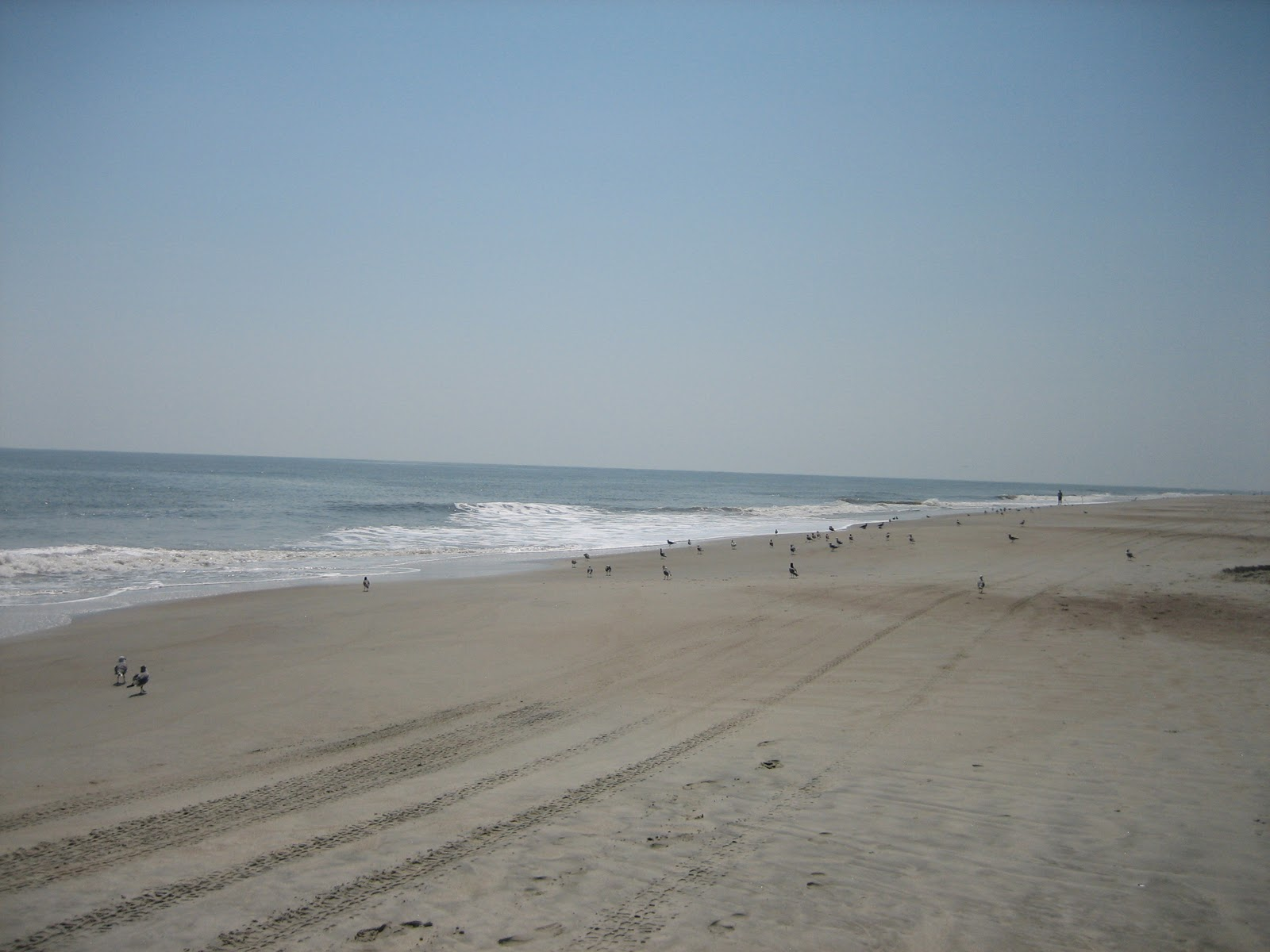 tybee island Browse 1043 resorts & hotels with spas in tybee island & save money with our expedia price guarantee read user reviews of over 321,000 hotels worldwide no expedia cancellation fee.