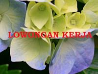 Info Lowongan Kerja Area Bandung