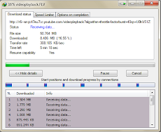 Internet Download Manager V 6.12+ Crack