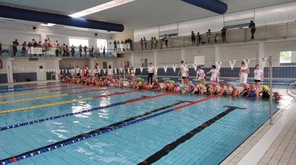 Canavese triathlon a s d risultati triathlon di piasco cn - Del taglia piscine chiude ...