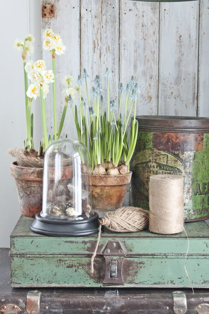 My new old life my new old house la greenhouse for Mica decoration cloche