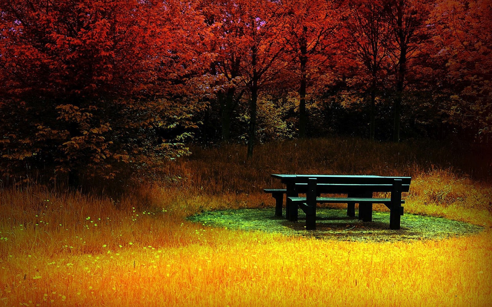 : nature wallpapers   hd wallpapers   beautiful wallpapers   scenery ...