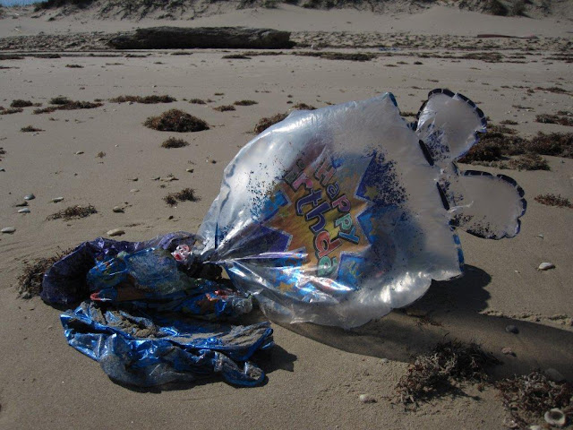 the blue truck: Great Pacific Garbage Patch