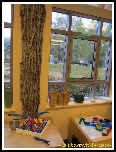 Slab of Tree Mounted in Preschool Classroom (via RainbowsWithinReach)
