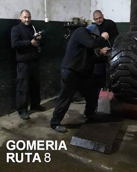 Gomeria Ruta 8