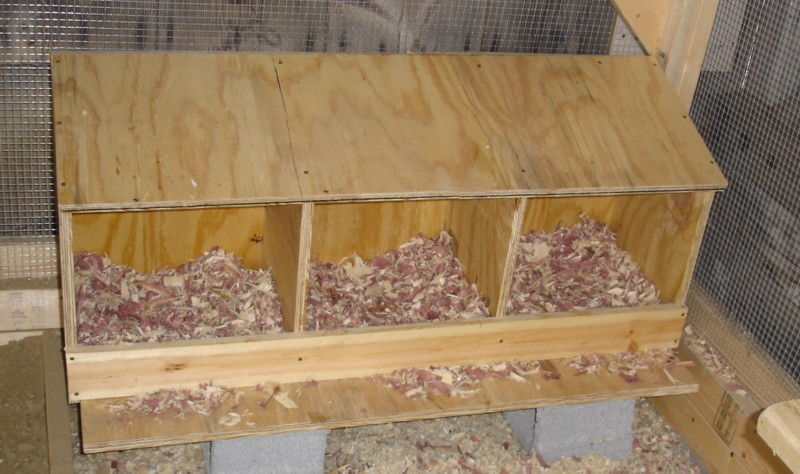 Как сделать гнездо для несушек с фото 25