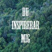 DU inspirerar mig!