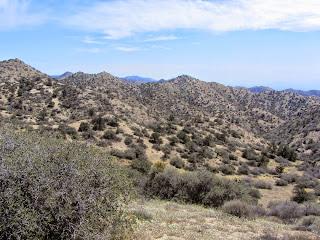 View southeast from Panorama Loop ridgeline, Black Rock Canyon, Joshua Tree National Park