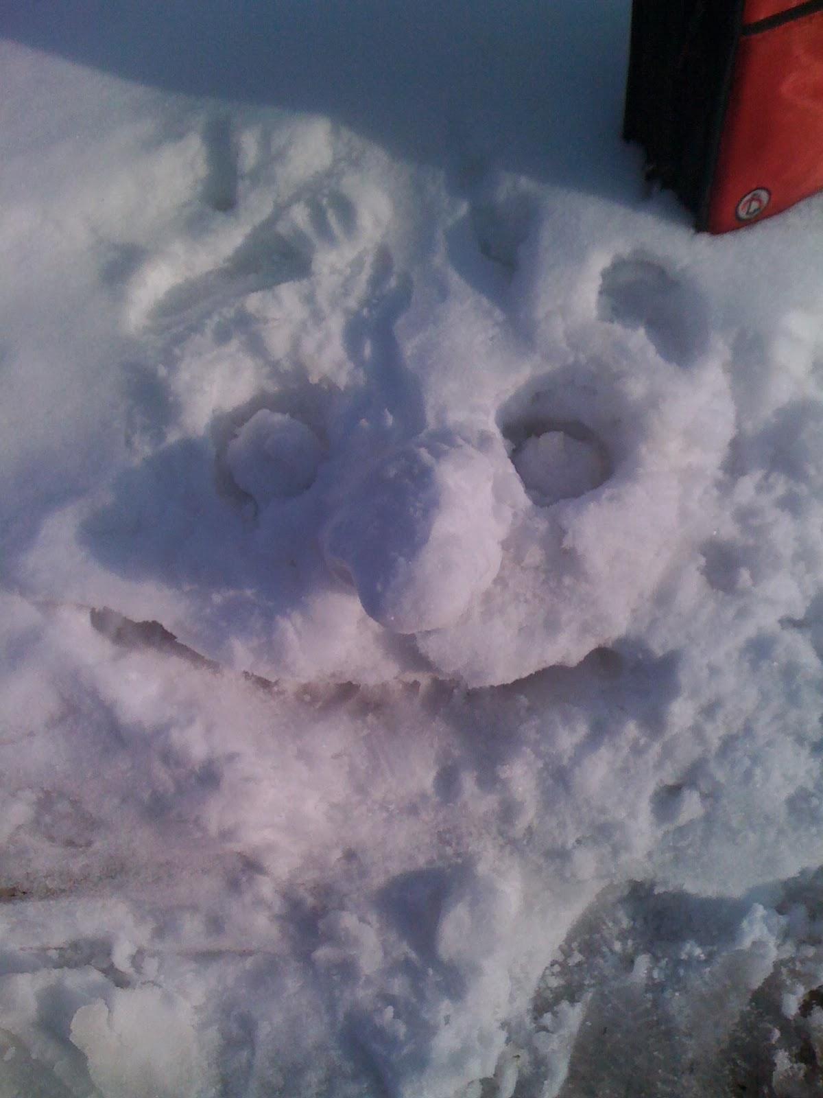 Snow man face