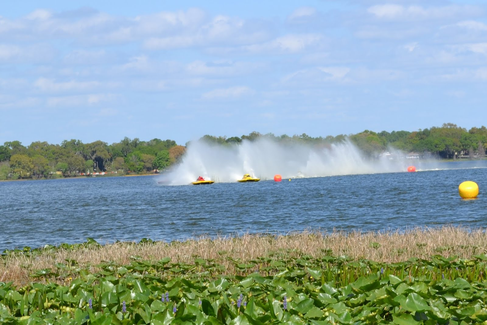 Lake Hollingsworth Boat Races