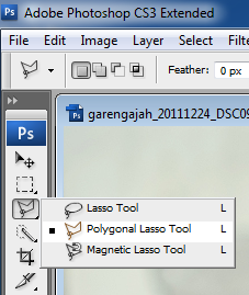 manipulasi photoshop cs untuk seleksi dengan polygonal lasso tool