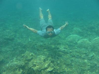 558664 2094259133060 1742785944 1012262 1962098526 n Child of Krakatoa, The Beauty of Archipelago and the Amazing Underwater Views