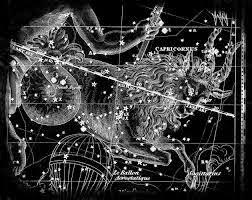 Horoscop februarie 2015 - Capricorn