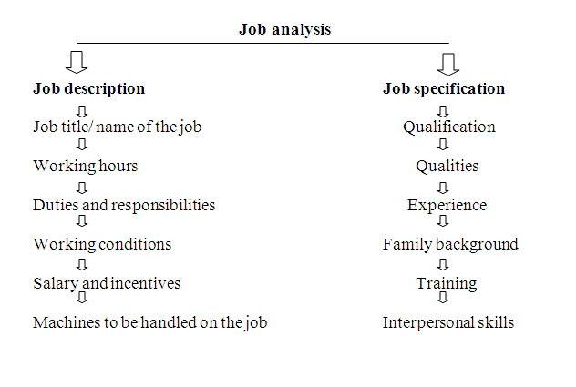 an analysis of the job description and job specification Job descriptions and job analyses in practice: how research and application differ a dissertation partial fulfillment of.