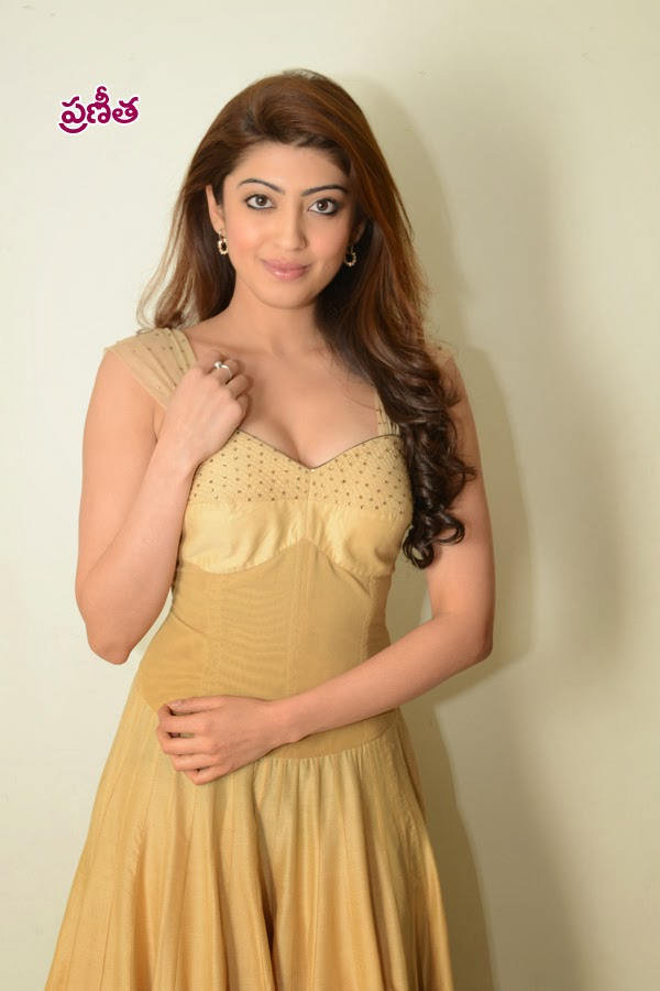prneetha,prneetha hot,most sexy heroins,sexy prneetha,prneetha pictures,sexy prneetha photos,very hot heroins picture